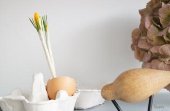 Ostern pellt sich frisch aus dem Ei – Ideen für eine Osterdeko