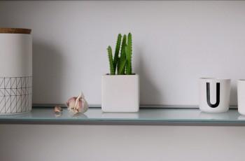Das Küchenregal als Miniatur-Auslage