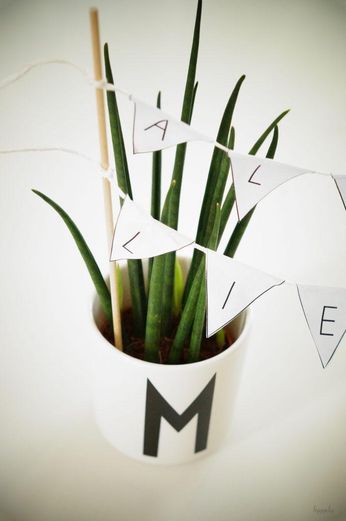 DIY Hochzeitsgeschenk Glückwünsche Hochzeit Design letters